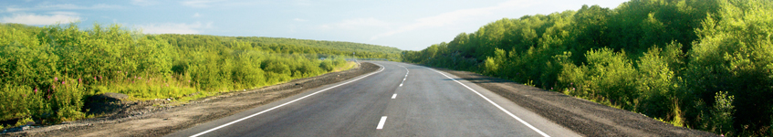 capita-roadmap